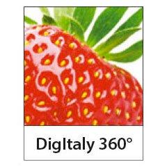 digitaly.jpg